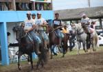 Araruama sedia 24ª edição da Exposição Especializada do Cavalo Mangalarga Marchador